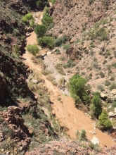Aravaipa Canyon Flash Flooding